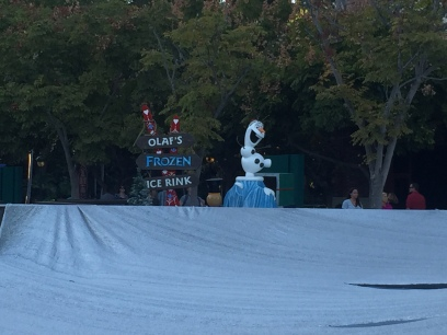 They were getting ready to open a Ice Rink in Downtown Disney the next day.